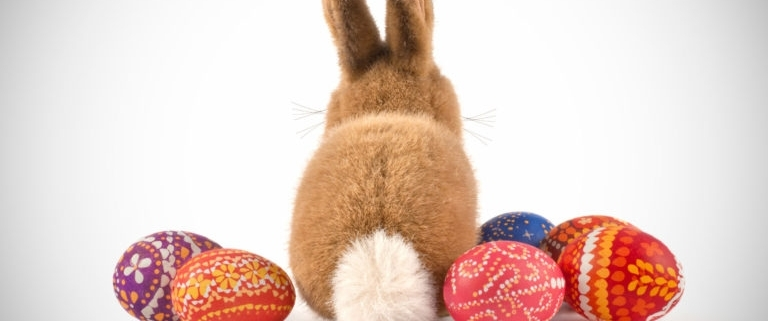A back of a fluffy bunny and a few colorful hand painted Easter eggs around it