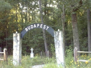 A Hungarian cemetery of the immigrants in Georgia, US